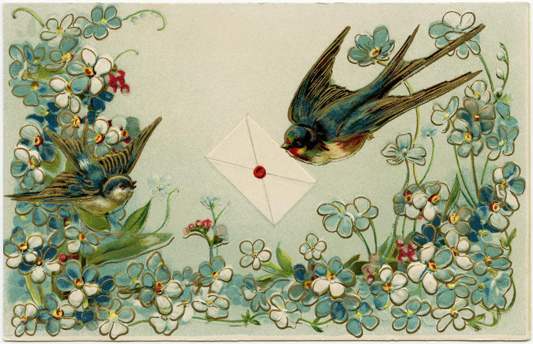 Vintage Birds And Flowers Postcard Free Download Old