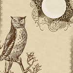 Owl Stationery by Megan at Lilac & Lavender
