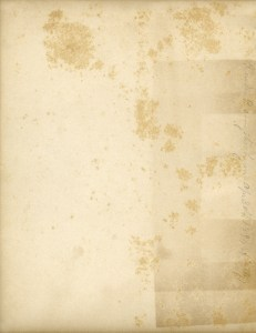 vintage endpaper graphic, grunge texture paper, old book page, shabby aged page