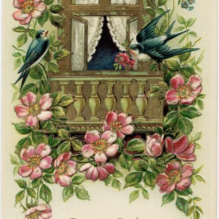 Birds and Flowers Postcard ~ Free Vintage Image