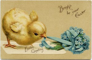 vintage easter postcard, chick pulling ribbon, yellow chick blue bouquet, free easter printable, old fashioned easter card