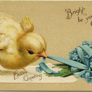 Vintage Easter Chick Postcard ~ Free Digital Image