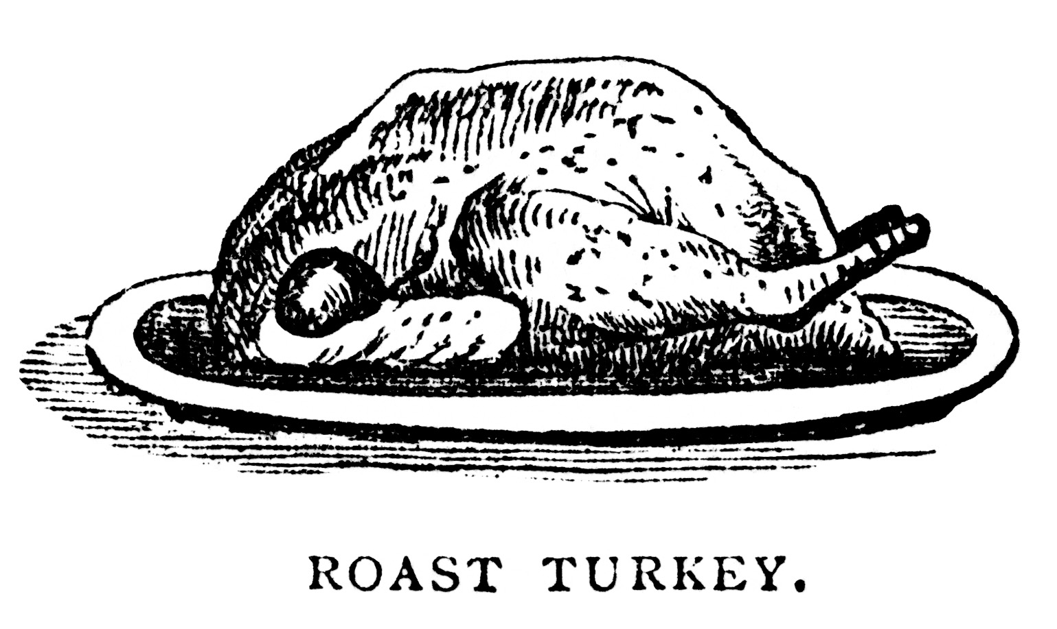 Ways To Cook Turkey