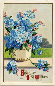 Victorian postcard graphics, vintage birthday postcard, blue flower clip art, old fashioned birthday card, vintage flower illustration