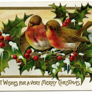 Birds on Branch of Holly and Berries