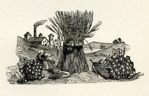 fall clip art, sheaf of wheat, fruit vegetable harvest, vintage garden clipart, black and white graphics