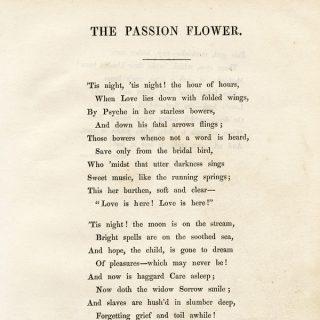 Poetry Archives Old Design Shop Blog