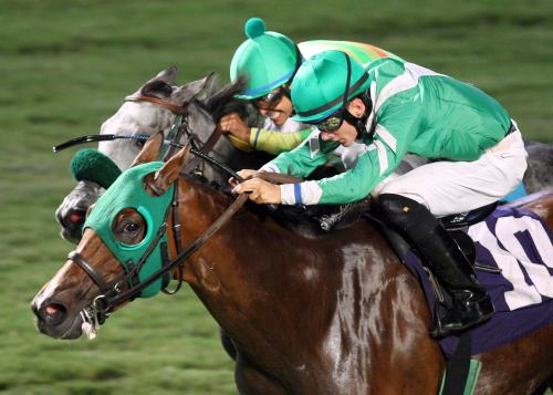 LADY_OLIVIA_The_17th_Running_of_the_Brookmeade_Stakes_07-06-13_CNL_Inside Action