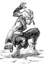 Halfling Monk