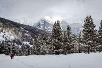 Snowshoers on a cold winter day with evergreen trees and mountains in the background.