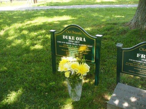 170529-04 marker Duke Ora