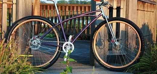 Rich Phillips custom 29er