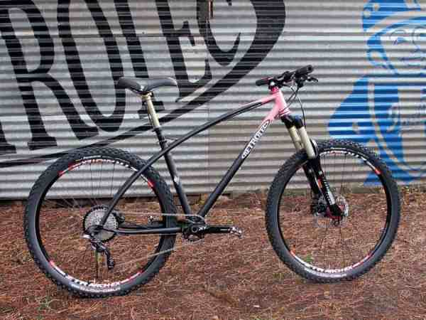 Retrotec Enduro Hardtail