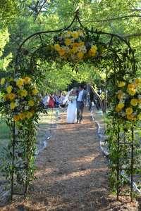 Wedding Deck Arch