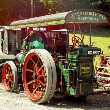 Steam traction engine driving experience