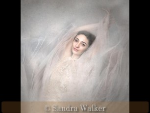 Commended_Sandra Walker_The Dancer
