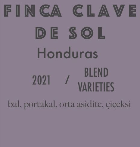 honduras 2021 yeni Finca Clave De Sol, HONDURAS ( ORGANİK)