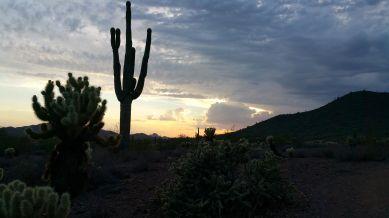 Hiking Apache Wash Trailhead. Desert Sunset, Phoenix. Arizona.