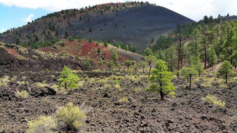 Lava Flow Trail Flagstaff Arizona