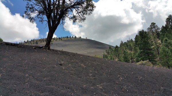 Lava Flow Trail. Hiking Flagstaff, Arizona.