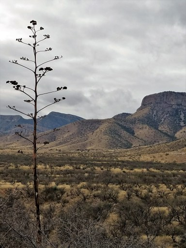 Hiking Kartchner Caverns State Park, Arizona