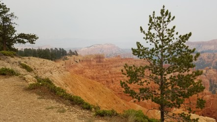 Bryce Canyon Rim Trail Utah Hiking National Park Old Man