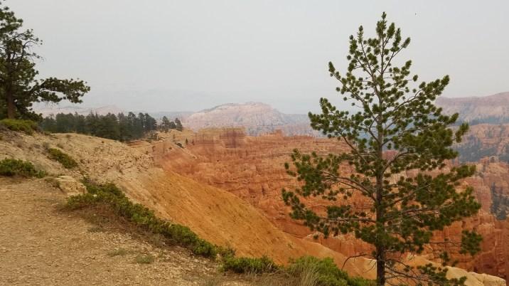 Bryce Canyon Rim Trail Utah Hiking National Park Old Man