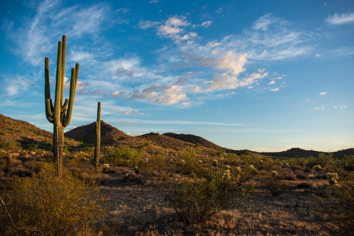 Desert Vista Trail Phoenix Arizona Hiking