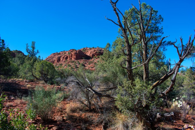 Red Rock State Park 16