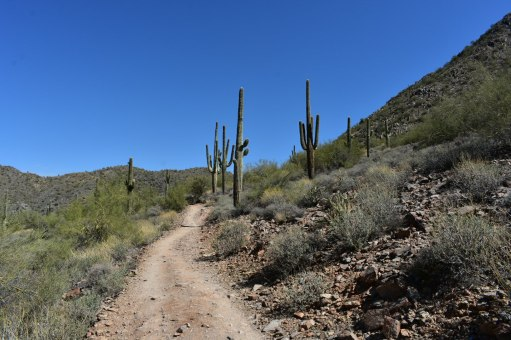 Hiking Arizona Overton Trail Rusty Ward Cave Creek