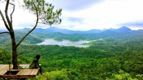 Wisata Alam Kalibiru Jogjakarta