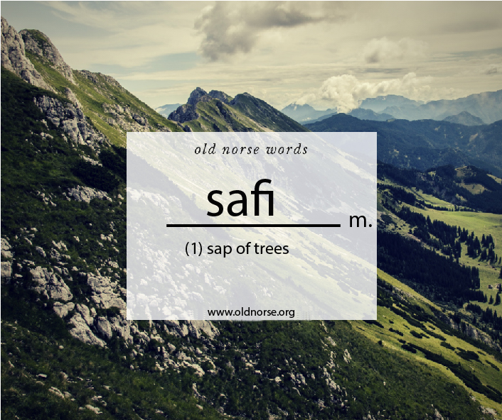 safi_Old Norse Vocab Template_Word of the Day.jpg