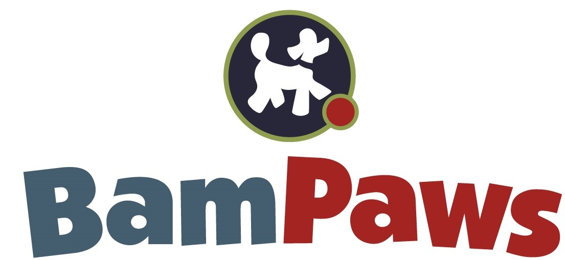 BamPaws Stay & Play