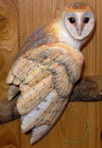 close up of a relief carving of a Barn Owl mounted on an oval plaque