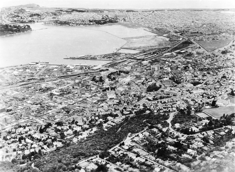 Aerial view of Dunedin