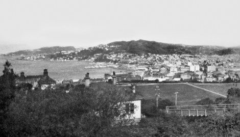 Harbour from Kelburn (Cable Car terminal)