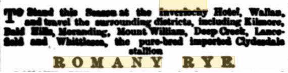 Romany Rye. Kilmore Free Press - 29th August, 1889