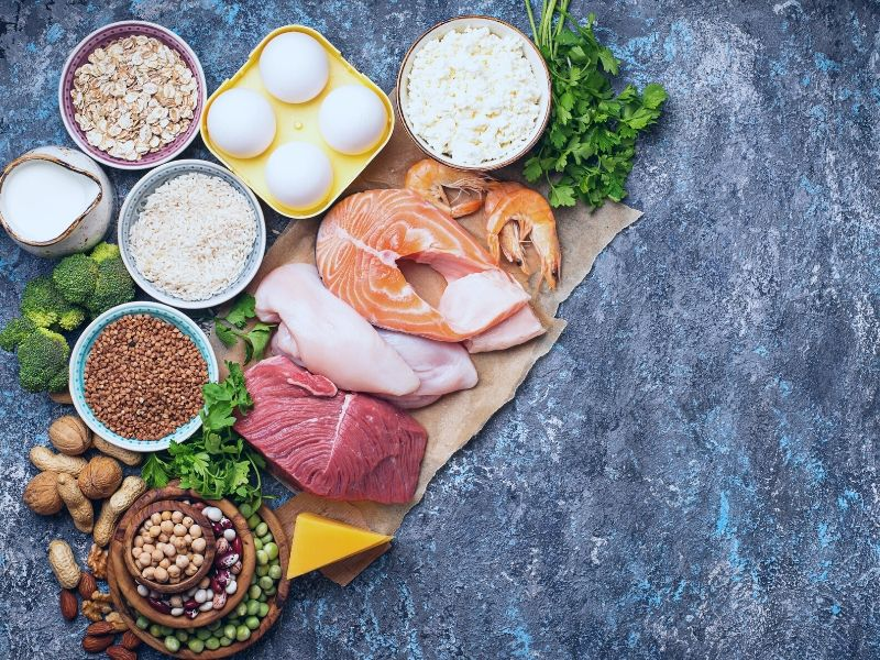 protein_vegetarian