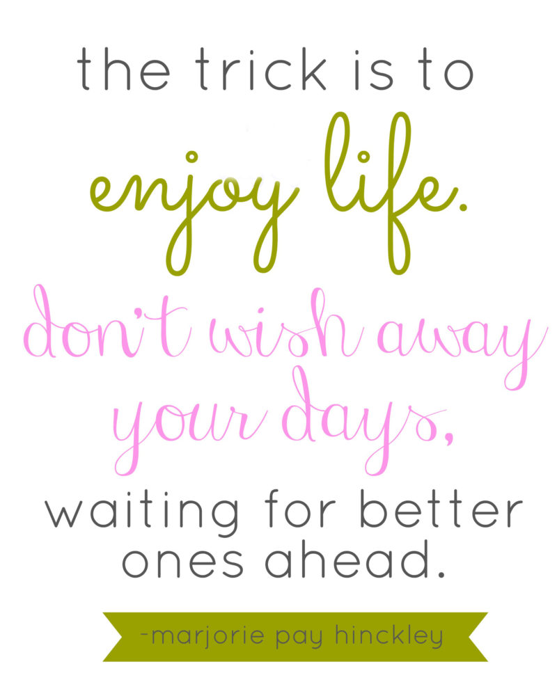 enjoy life quote | oldsaltfarm.com