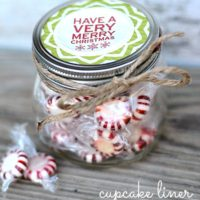 Cupcake Liner Treat jar | oldsaltfarm.com