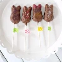 Chocolate-Covered Peeps Pops | oldsaltfarm.com