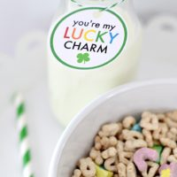 You Are My Lucky Charm | St. Patrick's Day Printable | simply kierste.com