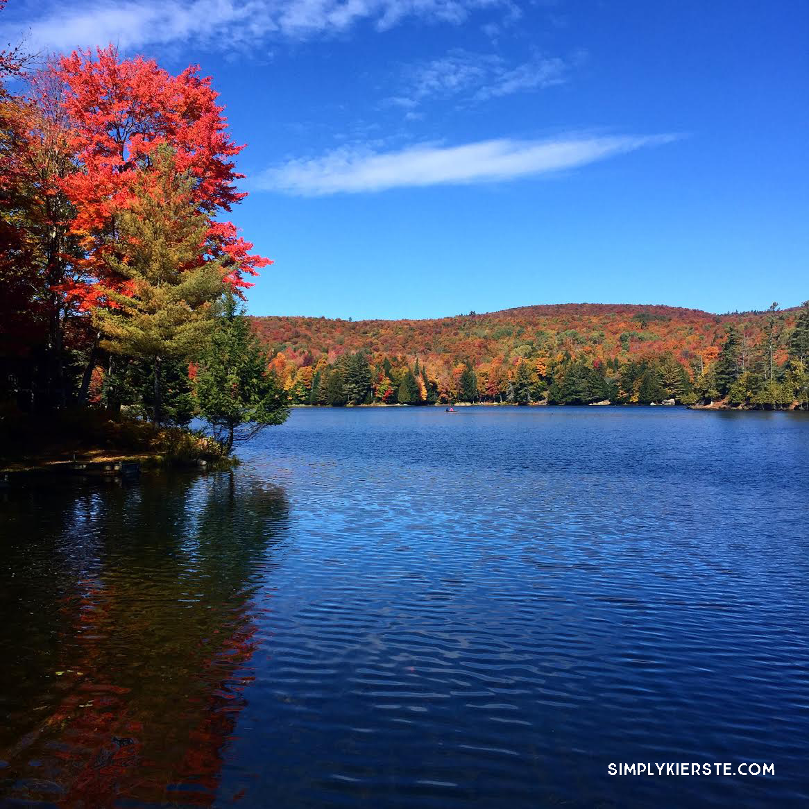 Fall Leaves | Adirondack Mountains