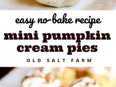 Mini No-Bake Pumpkin Cream Pie