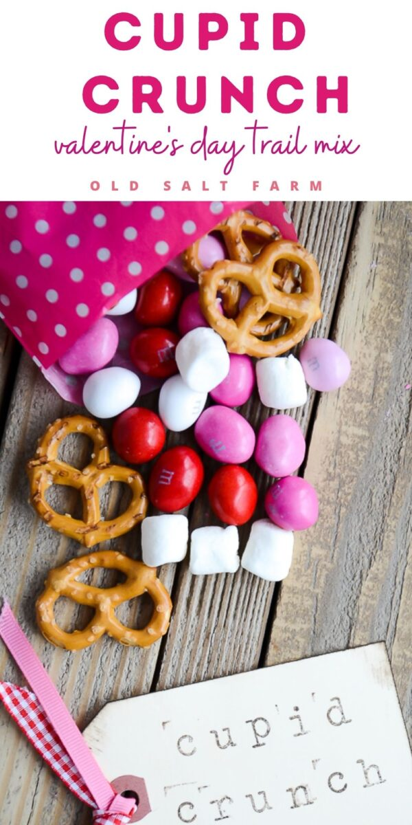 Cupid Crunch Valentine's Day Trail Mix