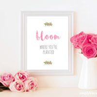 Bloom Where You're Planted Print | 11x14, 8x10, 5x7 sizes | oldsaltfarm.com