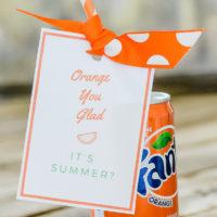Orange You Glad It's Summer | Summer Gift Idea #summer #summergiftidea #teachergift #teachergiftidea #summerteachergift #summerfun #summerideas #kidssummerideas #easysummerideas #freeprintable