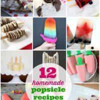 12 Homemade Popsicle Recipes | oldsaltfarm.com