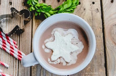 Frozen Whipped Cream Cubes | Hot Chocolate | oldsaltfarm.com #hotchocolateideas #hotchocolatetoppings #whippedcream