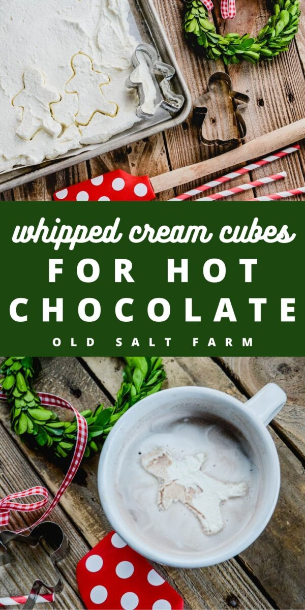Whipped Cream Cubes for Hot Chocolate